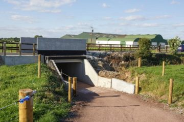 Cattle Underpasses